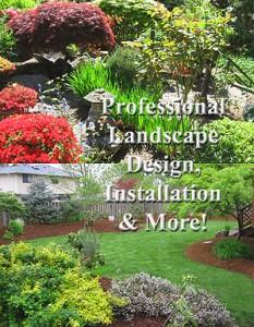 Professional Landscape Design, Installation & More   C & C Construction   Seattle & Mercer Island General Contractor